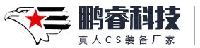 鹏睿电子科技有限公司